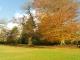 huntsham_court_autumn_upper_lawn_2