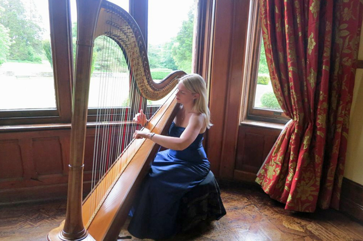 huntsham-court-harp