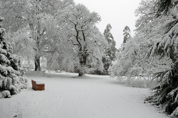 huntsham_court_snow_r