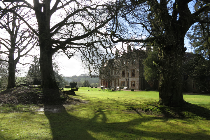 huntsham_court_spring_trees