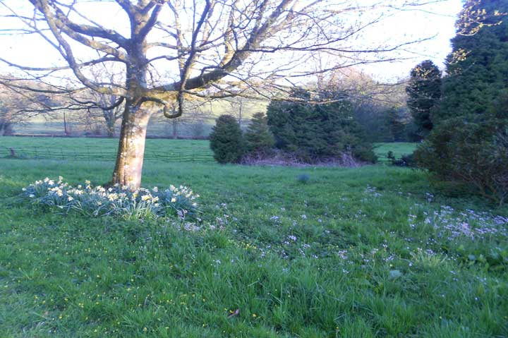 huntsham_april__1232
