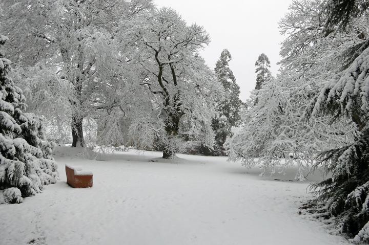 huntsham_court_snow_r